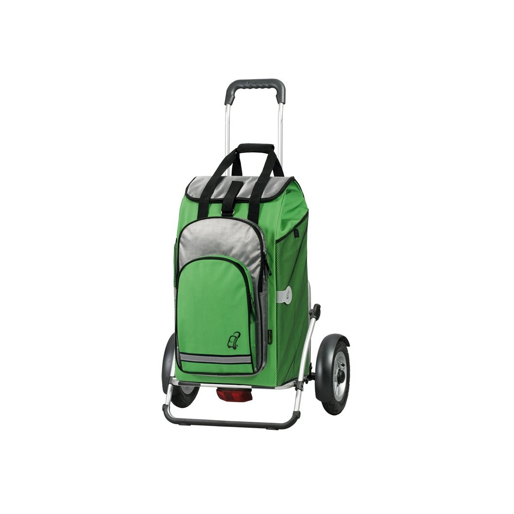 Royal Shopper Plus Hydro Vert pneu 25 cm