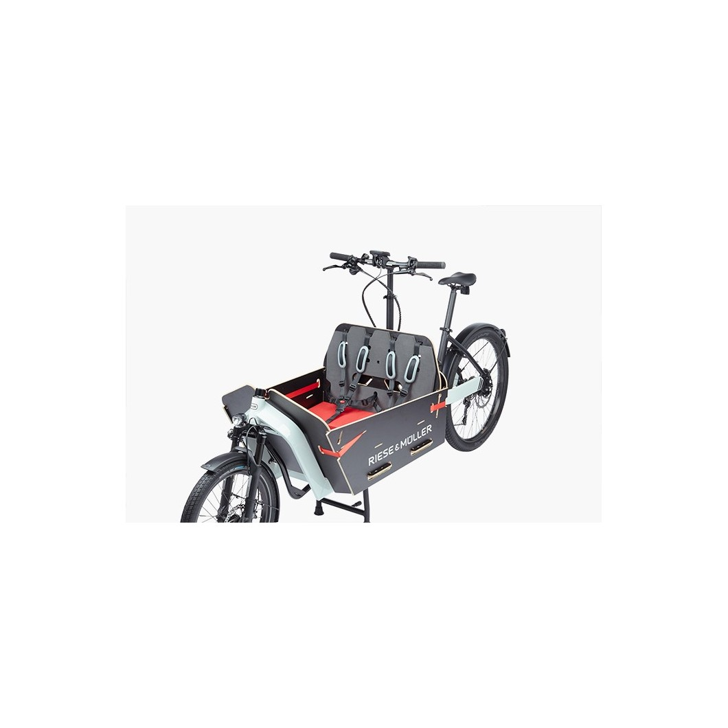 Vélo électrique biporteur cargo Riese & Muller Packster 80 NuVinci