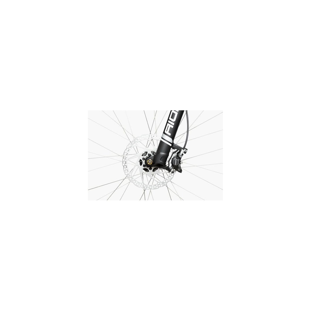 Vélo électrique RIESE & MULLER Charger GH Nuvinci 2017 - courroie