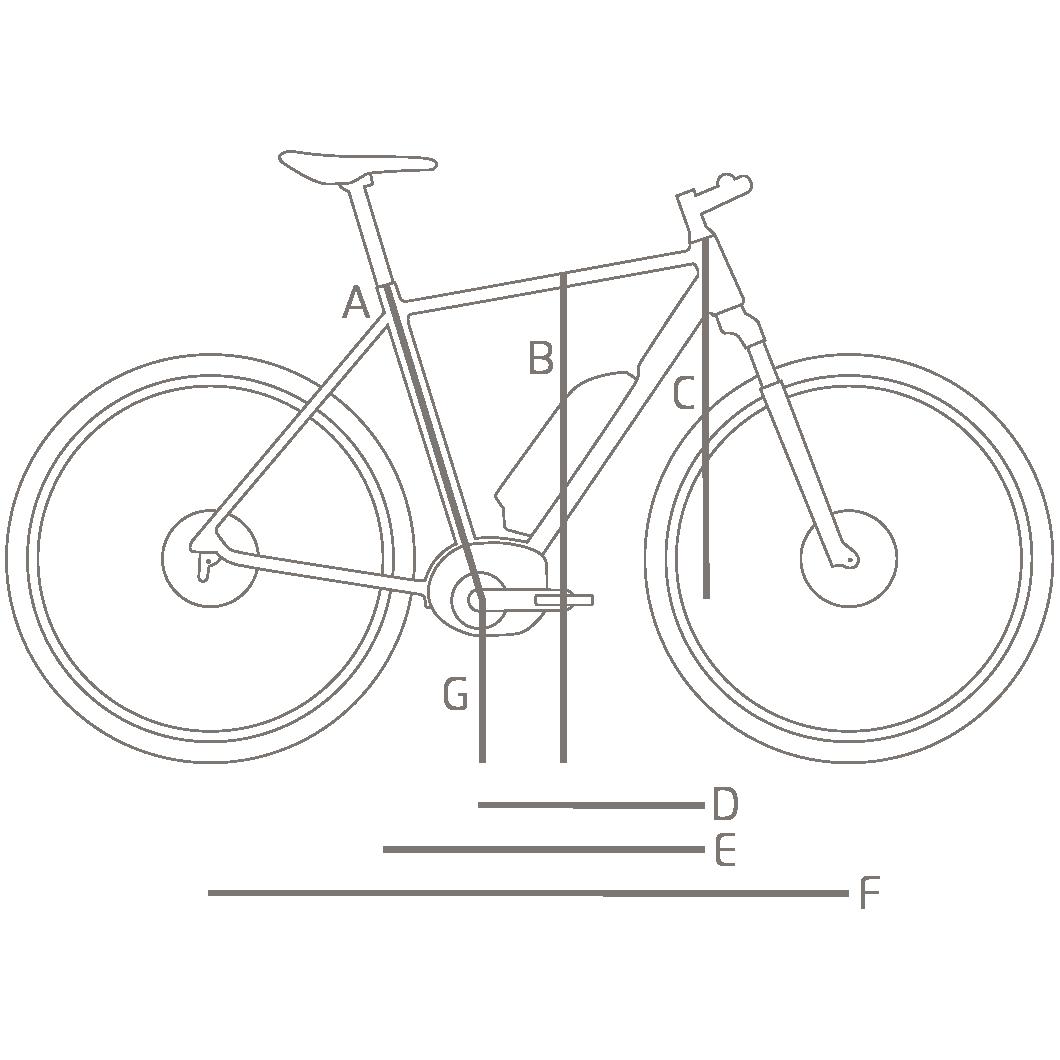 Vélo électrique Riese & Muller Roadster City 2018