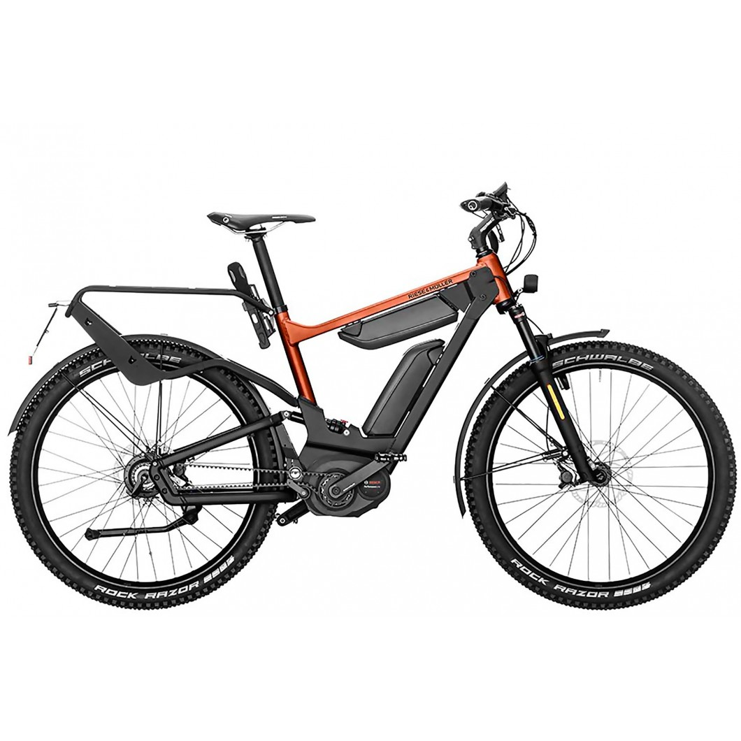 RIESE & MULLER Delite GX Rohloff HS 2019