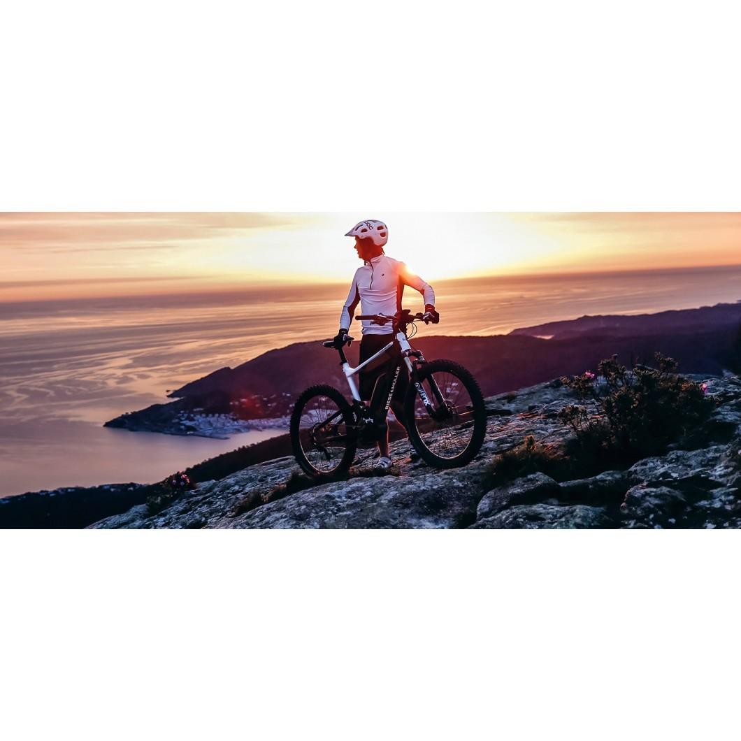 Vélo électrique Riese & Muller Delite Mountain Rohloff 2019
