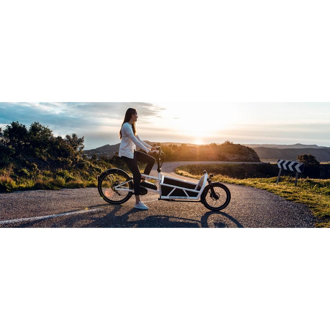 Biporteur électrique tout-suspendu Riese & Muller Load 60 Vario HS 2019