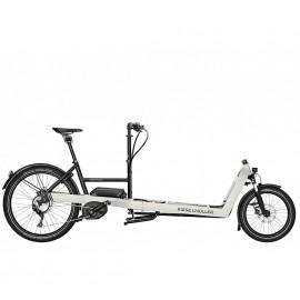 Vélo électrique cargo RIESE & MULLER Packster 80 Touring 2019 VÉLO ÉLECTRIQUE CARGO